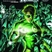 BLACKEST NIGHT TP